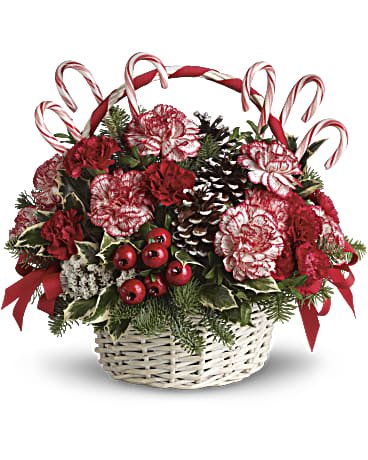 Candy Cane Christmas by Rich Mar Florist