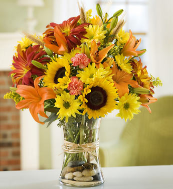 Fields of Europe for Fall by Rich Mar Florist