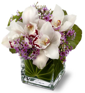 Lovely Orchids by Rich Mar Florist