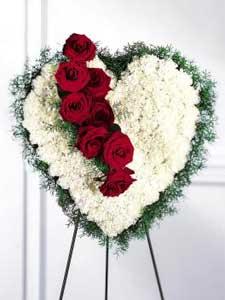 Bleeding Heart by Rich Mar Florist