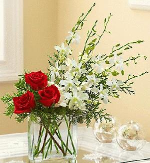 Colors of Christmas by Rich Mar Florist
