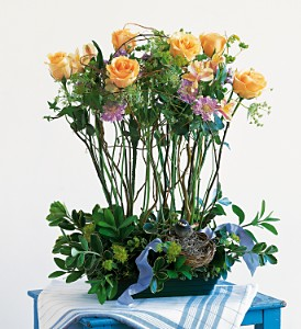 Rose Topiary by Rich Mar Florist