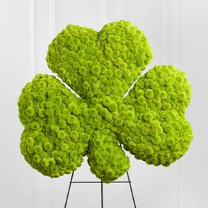 The Forever Shamrock Easel by Rich Mar Florist