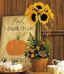 Sunflower Topiary by Rich Mar Florist