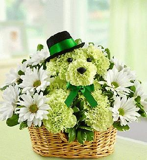 You Lucky Dog by Rich Mar Florist